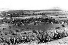 El Pueblo de Tlalpan en 1905