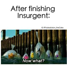 Exactly how I feel at the moment! finished it last night. insurgent