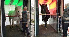 Fahri und Sylvi haben die grenzgeniale EquusIR Box getestet. Einfach überwältigend welche psychische