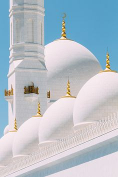 https://flic.kr/p/oYqE59 | Sheikh Zayed Grand Mosque | Constructed from 1996 to 2007, this mosque in Abu Dhabi is the largest mosque in the United Arab Emirates and the eighth largest mosque in the world. The exterior is white and elegant, with domes rising and falling, and the columns and ground decorated with floral motifs using inset colour marble. I find the interior somewhat over the top, however.