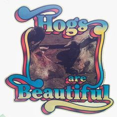 Hogs are Beautiful Vintage Holoubek Studios Iron On Heat Transfer by VintageIronOn on Etsy