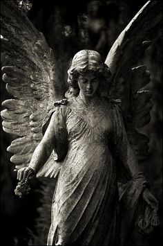 #stone #angels #sculpture