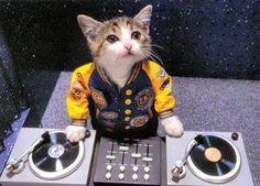 Sono un super-dj!