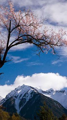 Beautiful View Tibet China