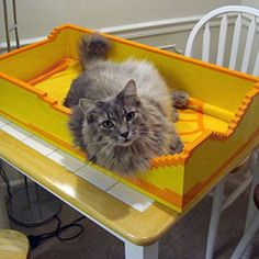 LEGO cat bed - now if that isn't perfect for the playroom....I don't know what is - LOL!