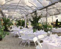 Woodbridge Ponds, secret garden, Abbotsford wedding venue