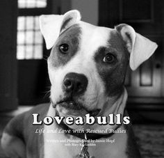 """""""Loveabulls, new coffee table book of rescued Pit bulls. 100% of profits benefit Best Friends Animal Sanctuary in Utah, the sanctuary that helped heal, rehabilitate."""""""