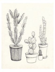 Noir  blanc Collection de cactus Je. Giclee print par HilaryWootton
