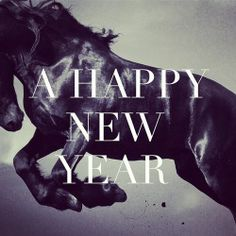 year of the horse happy year happy new year 2015 year of the horse