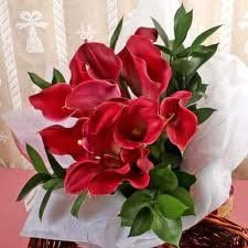 Introducing Classic Red Mini Calla Lily Toss Bouquet. Great Product and follow us to get more updates!