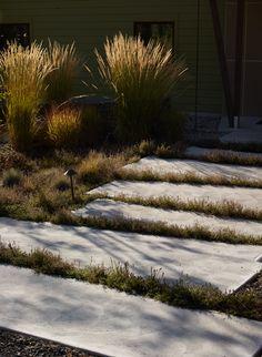 Irregular concrete path (Photo Allan Pollok-Morris)