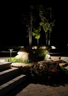 21 best pond lighting images on pinterest backyard ponds garden patio led low voltage lighting safety around steps and adds beauty aloadofball Image collections