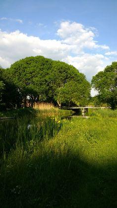 Kromme Rijn, Utrecht. Utrecht, Holland, Dutch, Golf Courses, Landscapes, Country Roads, Photos, The Nederlands, Paisajes