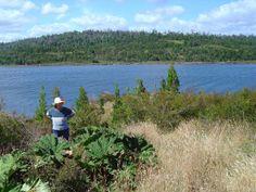 Chepu 2006. De fondo el Rio Chepu y contemplando unas nalcas chilotas.