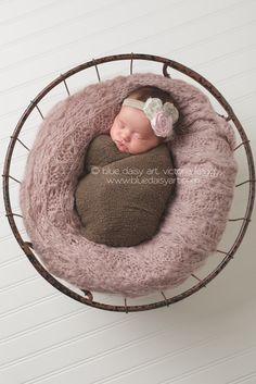 Newborn girl photography portraits  Springfield IL Newborn Photographer | Blue Daisy Art