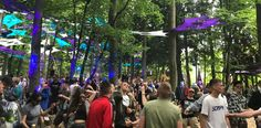 The Psytrance Forest at Boomtown Fair 2017