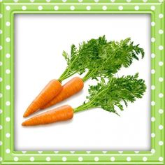 Is carrot or carrot juice a good choice in Stage 3 CKD Diet? In Stage 3 Chronic Kidney Disease, kidneys still work by themselves but may cause some side effects. Carrot contains rich nutritions, dietary fiber, vitamins and minerals, so it c Carrot Benefits, Health Benefits, Carrot Flowers, Eating Carrots, Milk Supply, Fruits And Vegetables, Vegetables Garden, Vitamins And Minerals, Clipart
