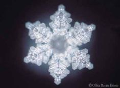 How Our Thoughts Affect Water…. Water, Consciousness & Intent, Dr Masaru Emoto FIndings VIDEO: Very Informative & Proof - Masaru Emoto Water Experime. Masaru Emoto Water, Hidden Messages In Water, Crystal Gallery, Water Experiments, Structured Water, Water Molecule, Water Images, Consciousness, Snowflakes