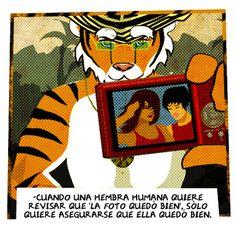 FOTO VANIDOSA   #Camara #Vanidad #Tigre