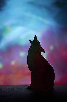 Children's Room Decor - Coyote Silhouette by Donald Erickson
