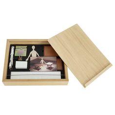 Cildo Meireles - Camelô - Técnica mista (1000 alfinetes + 1000 barbatanas + um boneco + caixa de madeira e motor bivolt) - exemplar 848/1000 - 30 x 39 x 7 cm