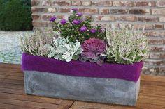 vřes v truhlíku - Hledat Googlem Planter Pots, Flowers, Balcony, Autumn, Halloween, Garden Sheds, Terrace, Fall, Royal Icing Flowers