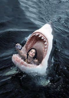 """"""" The selfie craze is still in full-swing, with everyone vying to take the best selfie, of all time. Creepy, Scary, Shark Pictures, Shark Art, Photo Chat, Great White Shark, Shark Week, Sea Monsters, Funny Wallpapers"""