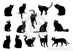 Gatos negros                                                       …