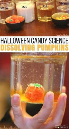 Dissolving Candy Pumpkins Super Fun Halloween Science for Kids via Looking for the perfect Halloween science experiment? This dissolving candy pumpkin experiment takes 2 minutes to set up and is super simple. Science Activities For Kids, Kindergarten Science, Autumn Activities, Science For Kids, Science Fun, Stem Activities, Science Ideas, Summer Science, Physical Science