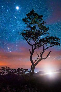 Oh starry night