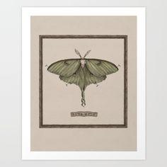 https://society6.com/product/luna-moth-tf2_print?curator=louielei