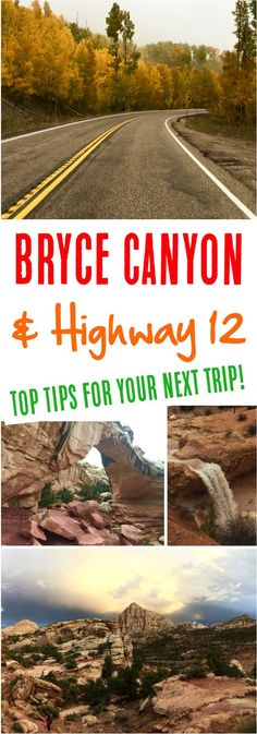 Highway 12 Utah!  Bryce Canyon and Capitol Reef tips, plus Escalante Utah hiking and petrified forest!