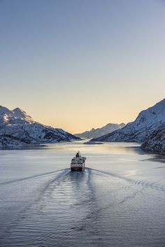 Northern Lights Norway Cruise - My dream Winter cruise.on the Hurtigruten Northern Lights Cruise, Northern Lights Norway, See The Northern Lights, Lofoten, Oslo, Beautiful Norway, Kirkenes, Visit Norway, Scandinavian Countries