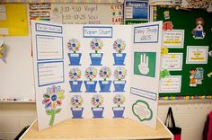 girl scout daisy kaper chart - Yahoo Search Results