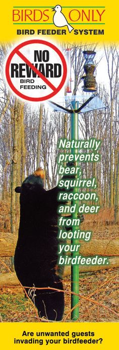 How To Build A Bear Proof Wildlife Feeder Plans On The