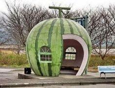 Watermelon bus stop