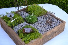 Life in the miniature...a spring Easter garden!
