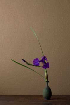 Ikebana by Toshiro Kawase, Japan Ikebana Arrangements, Ikebana Flower Arrangement, Flower Vases, Flower Art, Floral Arrangements, Art Floral, Floral Design, Bonsai, Arreglos Ikebana