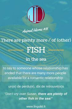 """Animal idiom of the day: """"There are plenty more / of (other) fish in the sea"""" 🐟 LinguiLD /Idioms/ (Design by LinguiLD) English Idioms, English Vocabulary, English Grammar, Confusing Words, Idiomatic Expressions, English Language Learning, Figurative Language, Sea Fish, Vocabulary Words"""