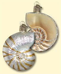 Nautilus Shell, Merck Family's Old World Christmas Glass Ornaments, www.oldworldchristmas.com, #Christmas #ornaments #glass