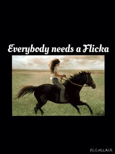 I have a Flicka named Destiny.. She's a stunning black mare who's go plenty of spunk.. She's thrown me and reared. But I've also had great times!