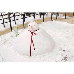 寒波のおかげでちゃんとした雪... 今年初めての雪だるまw 午前中はすごい吹雪になってきたけど 午後は日差しが暖かった... そういえば東北地方なのにあんまり雪降ってないのは 風が強すぎで降っても気づかれないうちに 全部吹き飛ばしちゃったからかな... -  #大連 #中国 #ふるさと  #雪 #初雪 #雪遊び #雪だるま  #カメラ女子 #お写んぽ  #カメラ好きな人と繋がりたい  #写真好きな人と繋がりたい  #写真撮ってる人と繋がりたい  #ファインダー越しの私の世界  #instagram #instadaily #instagramer  #iphone7 #iphoneography #iphoneographytr
