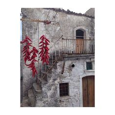Photo #1058714232966458619 from @_toio_. Usanze pugliesi  #love #instadaily #instagood #summer #instagramhub #cheamarezza #follow #cute #pepper #photooftheday #igdaily #instamood #vsco #volgopuglia #volgofoggia #volgoitalia #borghitalia #tweegram #beautiful #ig_italy #instatoio #igersitalia #foggia #panni #ita_details #nofilter #loves_puglia #loves_united_puglia #vivopuglia #ig_puglia