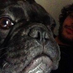 #GuglielmoScilla Guglielmo Scilla: Qualcuno posta selfie a mia insaputa.