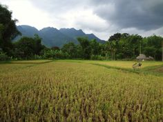 Mai Chau, Northern Vietnam