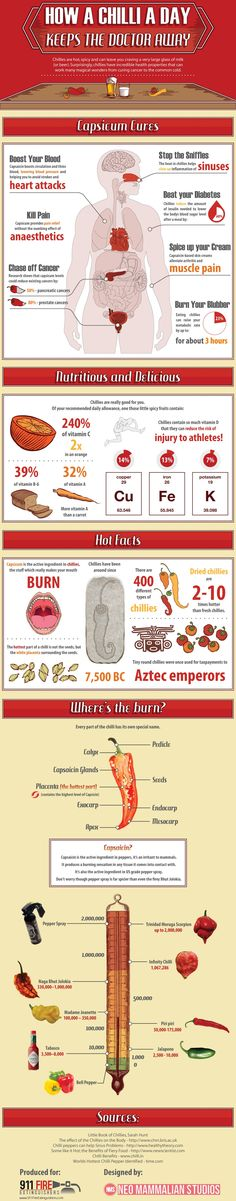 How a #Chilli a Day #Infographic #infografía