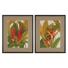 Sterling Tropical Bird of Paradise and Tropical Red Ginger Wall Art - Set of 2 - 151-010/S2