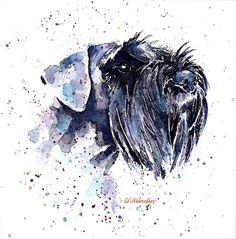 Forward looking   Print Watercolour A3 by EdsWatercolours on Etsy Schnauzer Gigante, Mini Schnauzer, Standard Schnauzer, Smartest Dogs, What Kind Of Dog, Miniature Schnauzer Black, Dog Paintings, Portrait, Acrylic Art