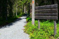 Närängänreitti is 12km long ring trail near the Russian border.