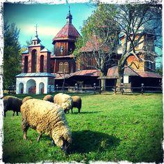 Orthodox church in Bystre, Bieszczady, Podkarpackie, Poland